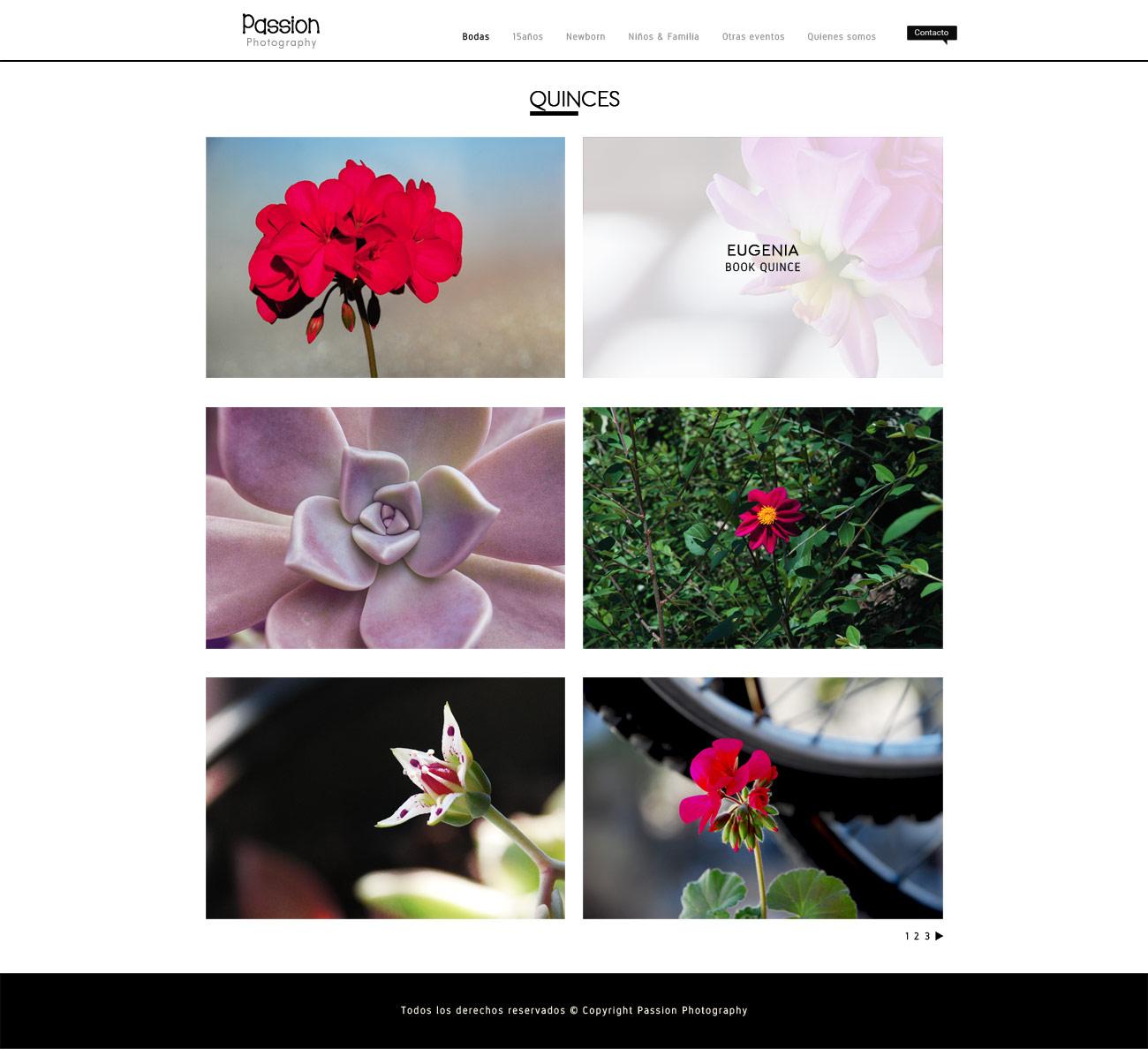 Galería de post de fotografias, web para fotografos LAVUELTAWEB