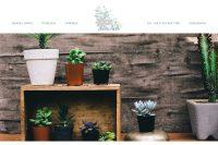 """portada web de """"planta madre"""", plantas de interior by La Vuelta Web"""