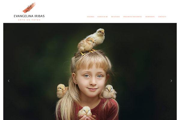 web Evangelina Iribas. Arte en foto.