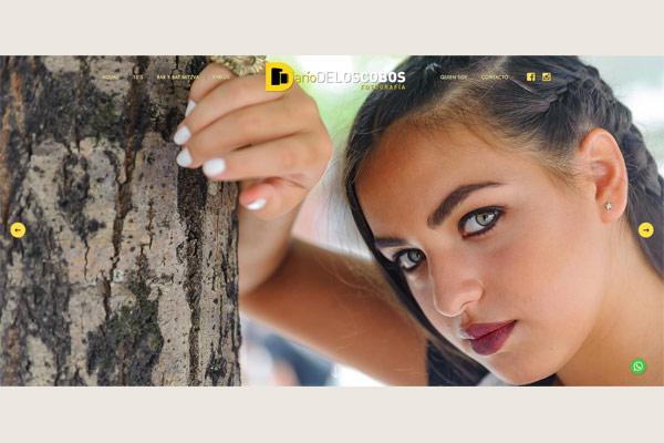web realizada por lavueltaweb.com para Darío De Los Cobos Fotografía de Buenos Aires